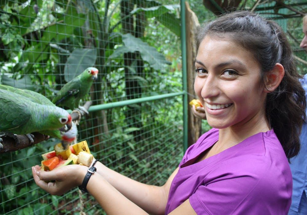 Broadreach Costa Rica Vet Medicine 1