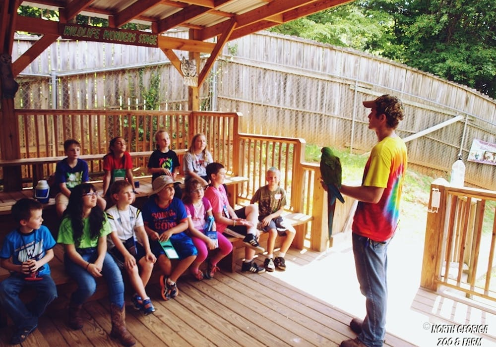 Ethan Give Military Macaw Presentation Day Camp 2016 2