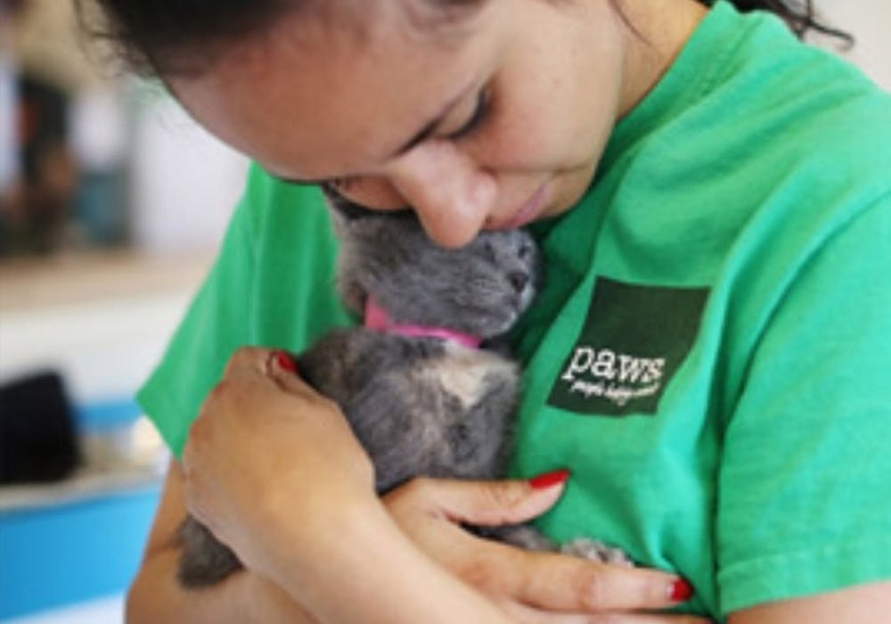 Volunteering Euclid Pet Pals