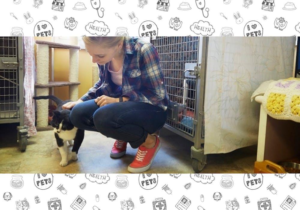Volunteering One Of A Kind Pet Shelter