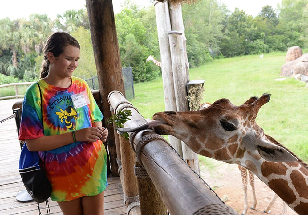 girl-giraffe-camp-gallery-web