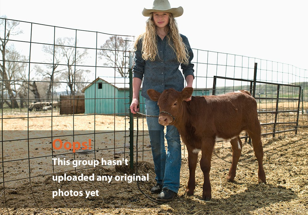 Girl Calf Oops Photo: tween cowgirl walks with calf