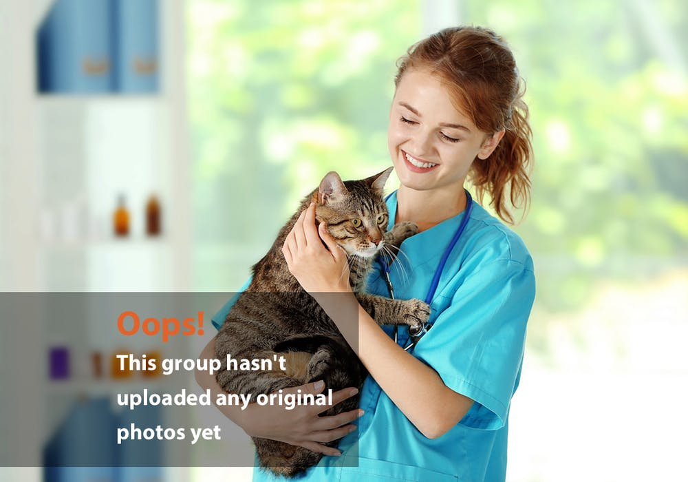 Girl in Vet Clinic Oops Photo – Girl Holding Cat