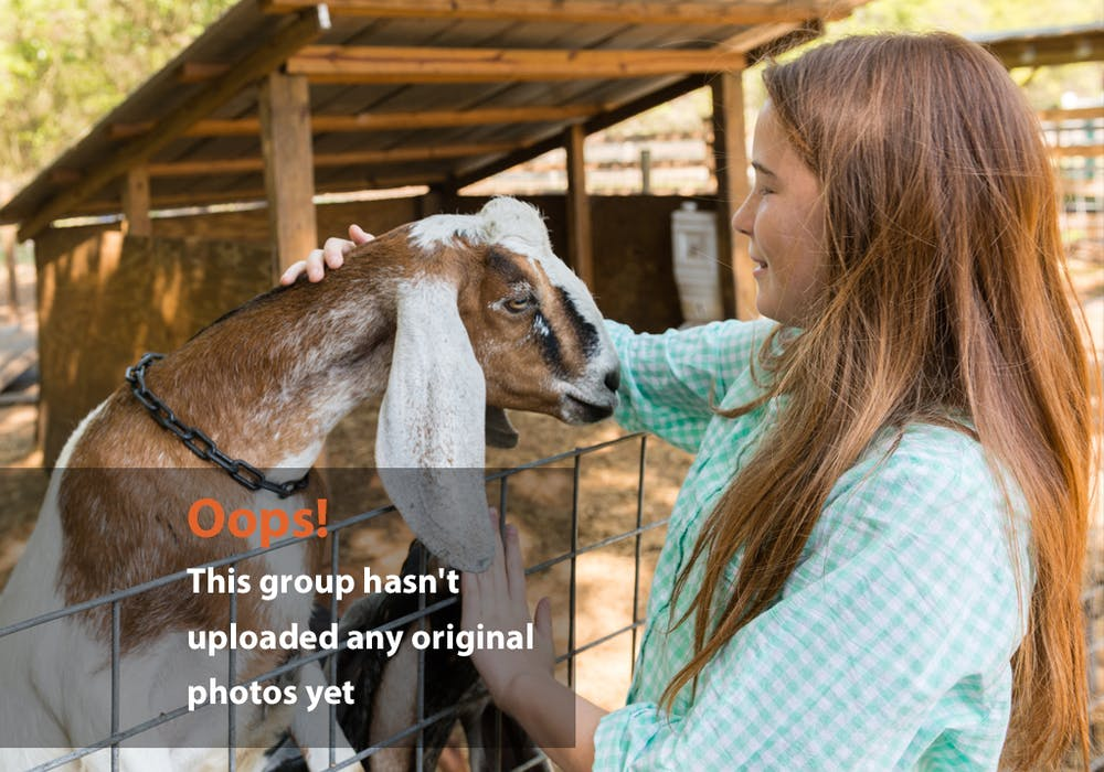 Girl Goat Oops Photo: Girl and goat smile at each other